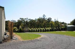 Driveways, paths, and fire resistant hedge are useful firebreaks. (Picture © Katherine E. Seppings.)
